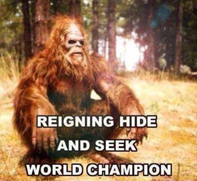 Hide and Seek Champion