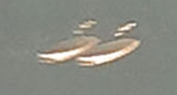 Loch-Ness-UFOs-Closeup